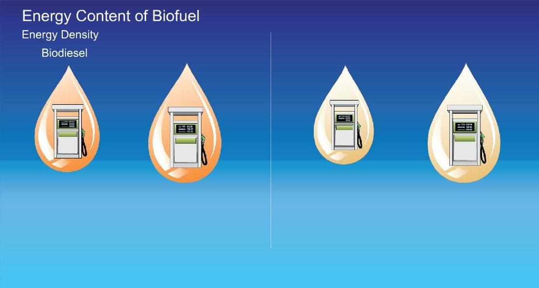 Energy content of biofuel