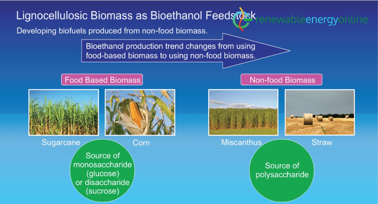 Lignocellulosic biomass