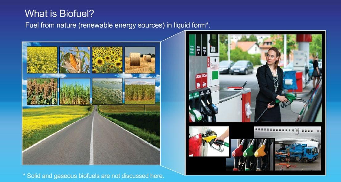 Transportation fuel from biomass