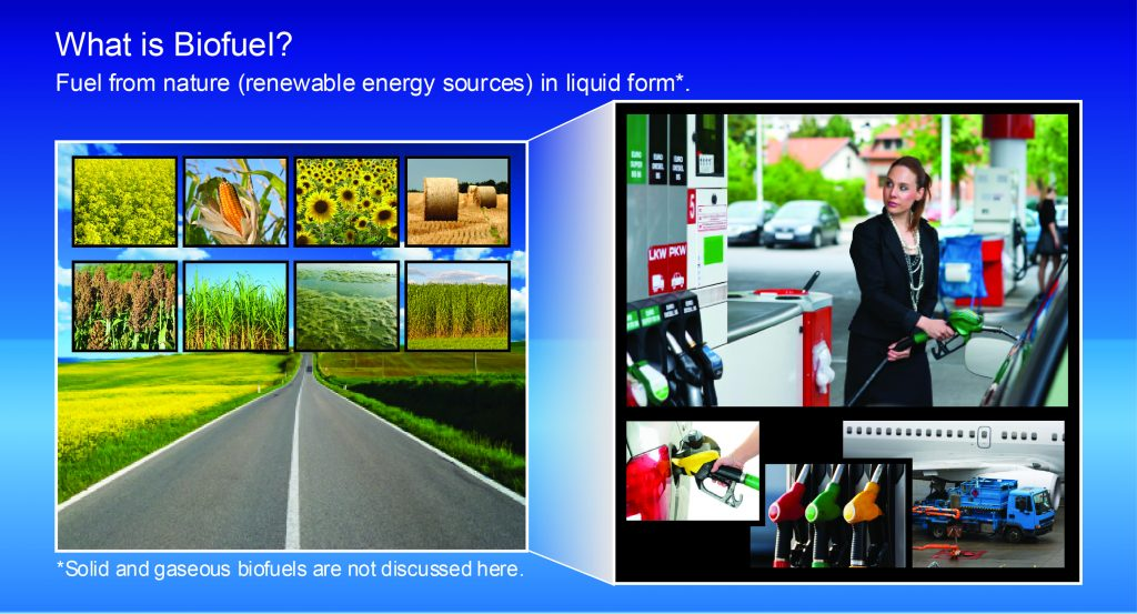 E-learning biofuels: biofuel replacement of fossil fuel